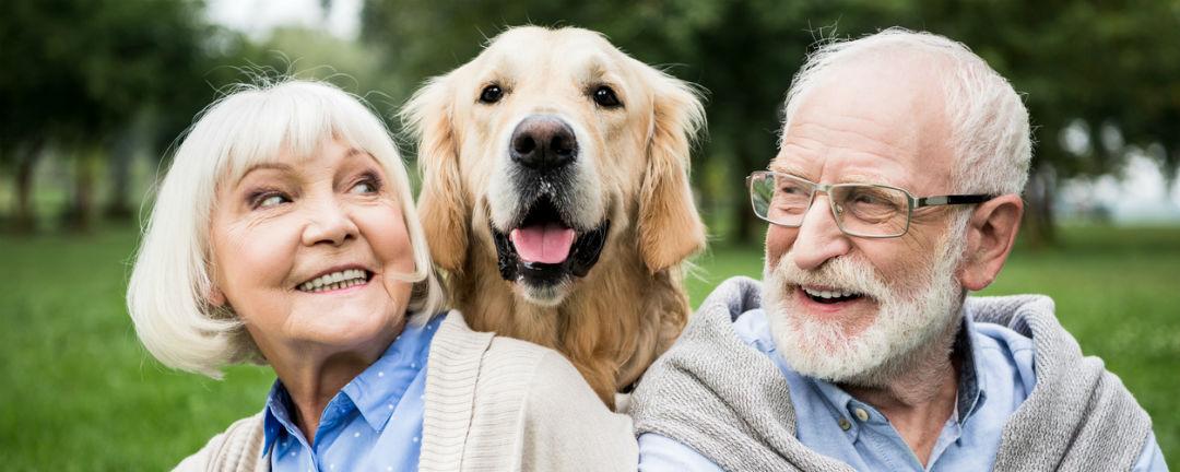 Hra Šťastných 10 nadělila seniorovi 5 milionů. Za výhru si koupí nové auto