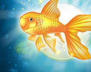 Mini Zlatá rybka - obrázek