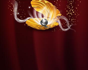 Maxi Černá perla - obrázek