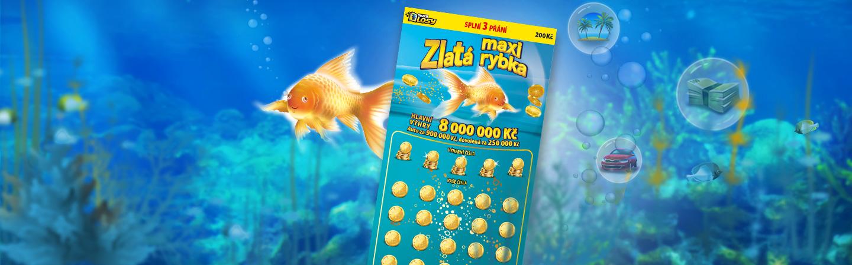 Maxi Zlatá rybka - Banner