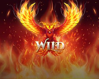 Firebird Double 27 - obrázek