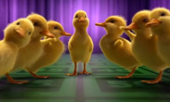 Šťastných 10 (2015) - Kačky tančí, jak vy hrajete