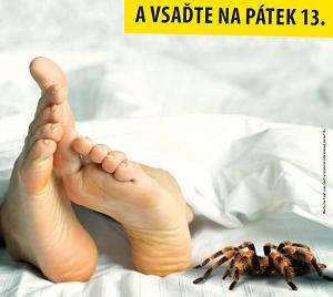 Ne každý pavouček nosí štěstí (2017)