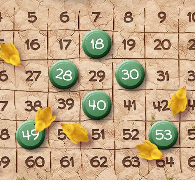 Vyberte si 4 až 6 čísel