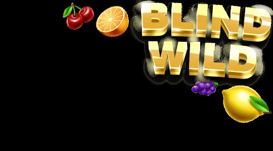 Hry - Blind Wild